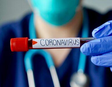 Najwięcej przypadków koronawirusa potwierdzono na Mazowszu. Są szczegółowe dane