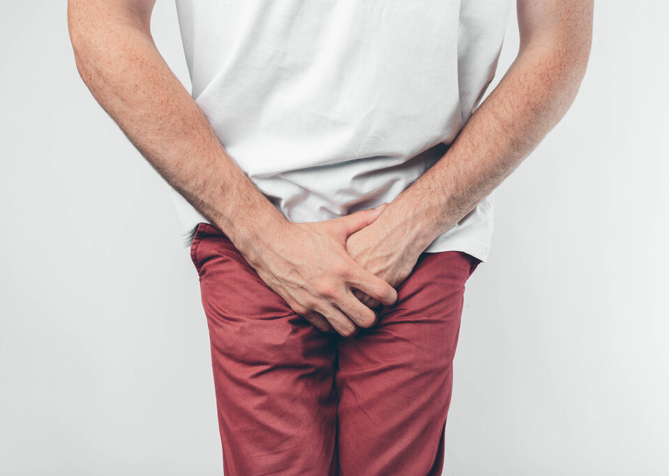 prostata badania psa