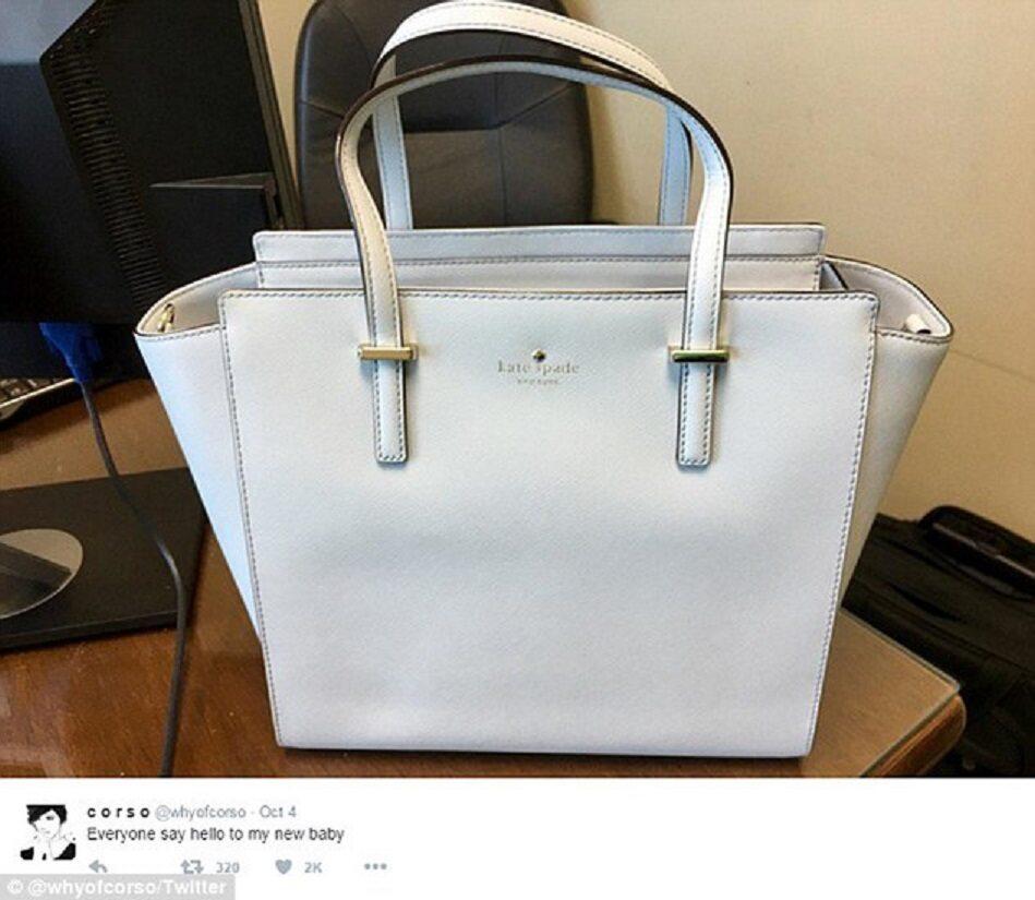 3d91a04e67adc Nowa internetowa zagadka. Jaki kolor ma ta torebka?