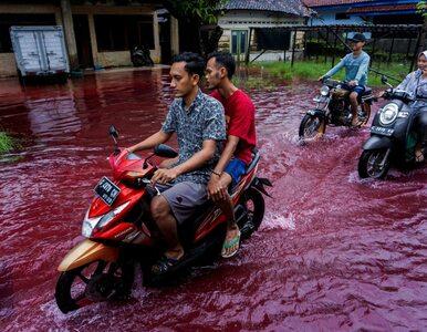 """""""Czerwona powódź"""" w Indonezji. Niezwykłe zdjęcia obiegły internet"""